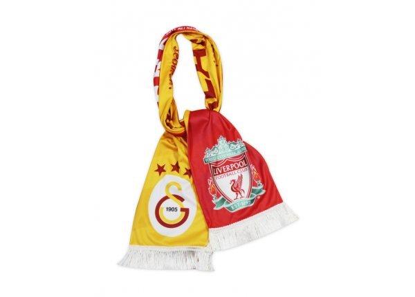Fanscarf_3_1